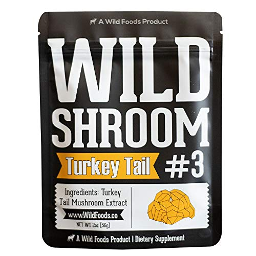 Turkey Tail Mushroom Extract Powder 10:1 | Fruiting Bodies, Triple Water Extracted, Vegan, Paleo Adaptogenic, Immune Promoter, Gut Health & Mental Support (2 Ounce)