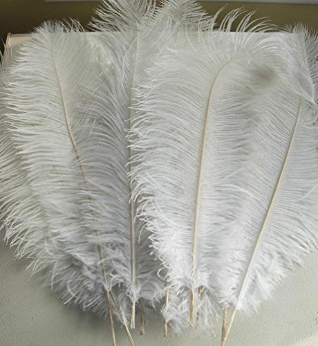 AWAYTR Natural 18-20 inch(45-50cm) Ostrich Feathers Plume for Wedding Centerpieces Home Decoration White 50 Pcs by AWAYTR