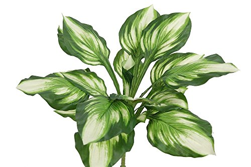 Admired By Nature GG6603-GREEN-4 18 Stem Artificial Diffinbachia Bush- 4Piece, Green by Admired By Nature