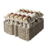 CartChamps Egg Flats (Bulk Pack of 15) fits Small - Extra Large Chicken Eggs : Each Biodegradable Egg Crate Flat Holds 30 Eggs