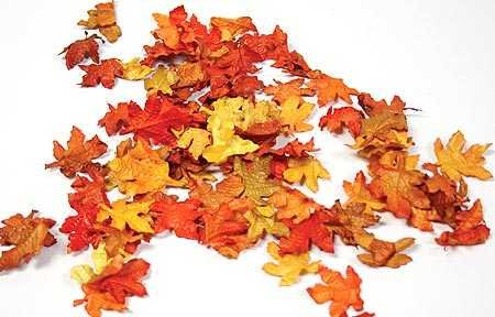 Mini Fall Maple Leaves – Autumn Weddings, Invitation Leaves, Fall Table Accemt, Health Care Stuffs