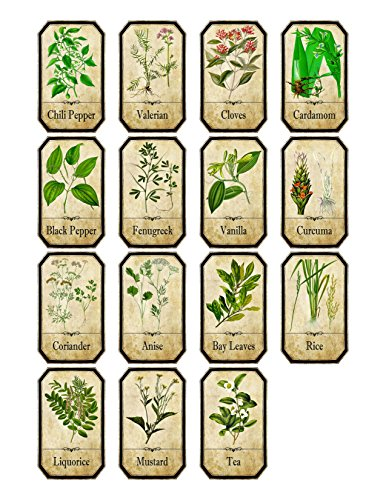 Thorpe Signs Set of 15 Vintage Style Apothecary Spice Herb Labels Set 2 Sticky Backed Vinyl Water and Oil Proof