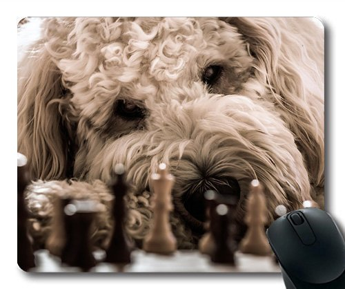 Dog Lover Mouse Pad,Dog Goldendoodle Chess Play Hybrid Pet Animal,Dogs Mouse mat