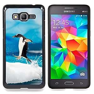 TikTakTok Funda Carcasa protectora para Samsung Galaxy Grand Prime G530H / DS - Saltar Pingüino