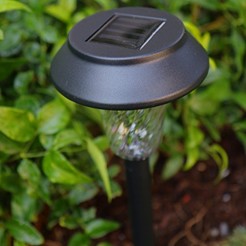 Enchanted Spaces Black Solar Path Light Set Of 6 With