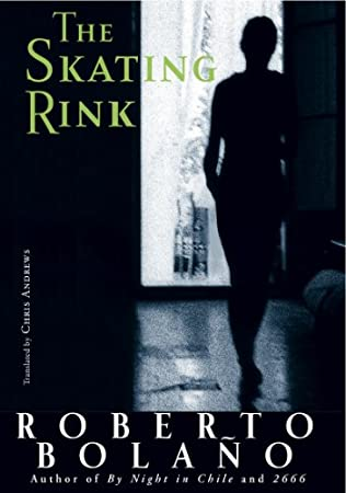 book cover of The Skating Rink