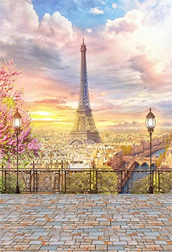Laeacco 5x7ft Vinyl Photography Background Paris Balcony Landscape City Aerial View Eiffel Tower Street Lamp Cloudy Sky Blossoms Trees Pink Photo Background Wedding Girls Adult Background Studio - New Street York 7 Spring