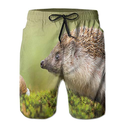 Men Swim Trunks Beach Shorts,Animal Photography in Eastern Europe Slug with Hedgehog Scenes from Nature Print L
