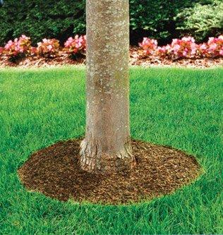 60 Tree Ring Mulch Mat