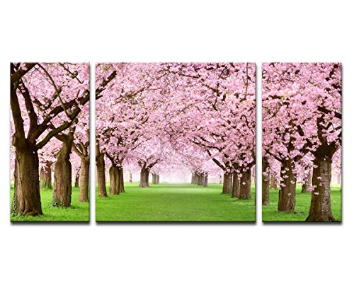 Noah Art-Rustic Landscape Art Print, Japanese Cherry Blossom Sakura on Grassland Tree Wall Art Pink Flowers Pictures on Canvas Prints, 3 Piece Stretched Canvas Romantic Bedroom Wall Art (Trees Cherry Paintings Blossom Of)