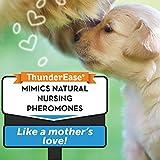ThunderEase Dog Calming Pheromone Diffuser Kit