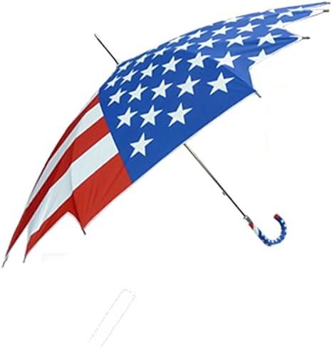Vista - Paraguas con Bandera de Estados Unidos: Amazon.es ...