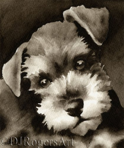 Miniature Schnauzer Puppy Sepia Watercolor Art Print by Artist DJ Ro.