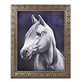 Trademark Fine Art White Arabian Stallion by Jenny Newland Photography in Gold Ornate Frame, 16'' x 20''