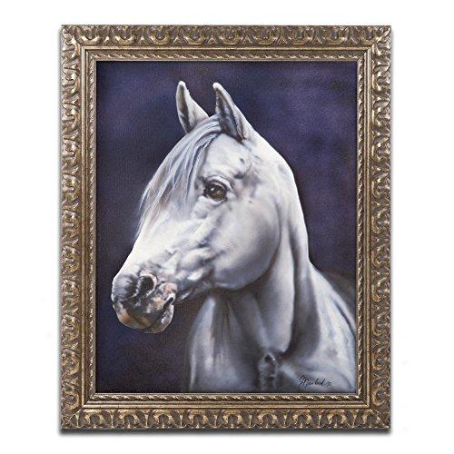 Trademark Fine Art White Arabian Stallion by Jenny Newland Photography in Gold Ornate Frame, 16'' x 20'' by Trademark Fine Art