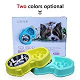 Dog Bowls Stainless Steel Pet Slow Feeder Bowl, Two in One Anti-Skid Healthy Pet Eating Bowl for Interactive Training Anti Choke
