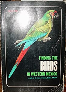 Finding The Birds In Western Mexico A Guide To States Of Sonora Sinaloa