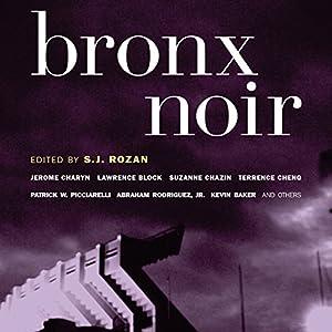 Bronx Noir Audiobook