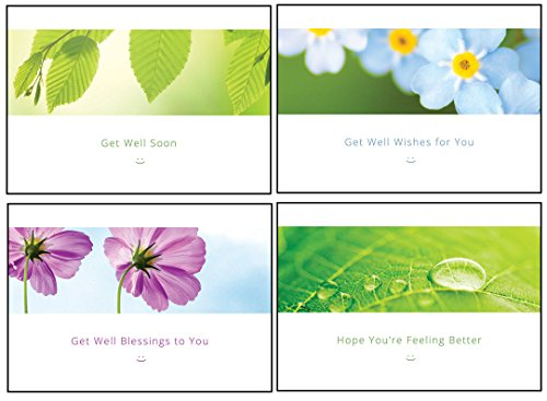 Scripture Cards Gift Boxed (Get Well Cards Nature Designs 12 Assorted Cards with 4 Designs Boxed Flowers and Leaves Get Well Cards Bulk with NIV Scripture– Floral Greeting Cards for Her for Him)