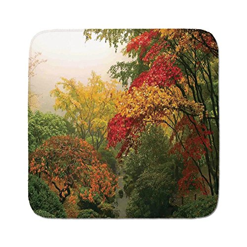 Maple Desk Country (Cozy Seat Protector Pads Cushion Area Rug,Country Home Decor,Maple Trees in the Fall at Portland Japanese Garden One Foggy Morning Scenery,Red Yellow Green,Easy to Use on Any Surface)