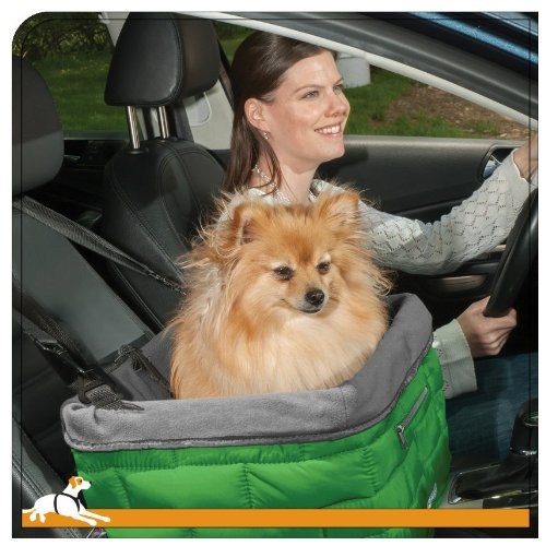 How To Get Dog Smell Out Of Car Seats