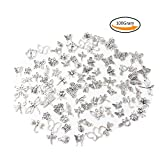 Teenitor 100 Gram Mixed Shape Butterfly Dragonfly Spider Insects Theme Assorted Antique Charms Pendant for Crafting, Jewelry Making Accessory - Silver