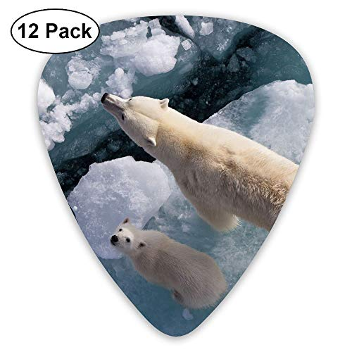 (Classic Guitar Pick (12 Pack) Global Warming Polar Bear Wild Animal Player's Pack for Electric Guitar,Acoustic Guitar,Mandolin,Guitar Bass)
