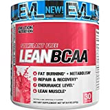 Evlution Nutrition LeanBCAA, BCAA's, CLA and L-Carnitine, Stimulant-Free, Recover and Burn Fat, Sugar and Gluten Free, 30 Servings (Watermelon)