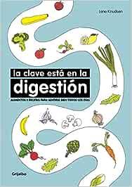 La clave está en la digestión: Alimentos y recetas para