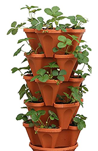 Mr Stacky 5 Tier Strawberry Planter product image