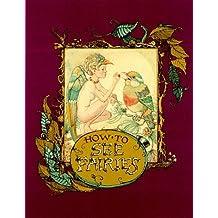 How to See Fairies by Charles Van Sandwyk (1999-09-03)