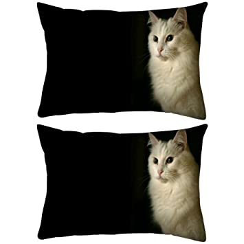 Pack de 2 gato persa Rectángulo Toss Throw Pillow Cojín Funda Decoarative funda de almohada 12