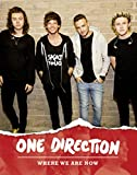one direction book - One Direction: Where We Are Now