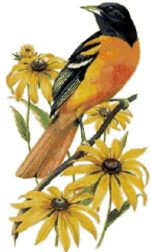 Maryland State Bird (Baltimore Oriole) and Flower (Black-Eyed Susan) Counted Cross Stitch Pattern