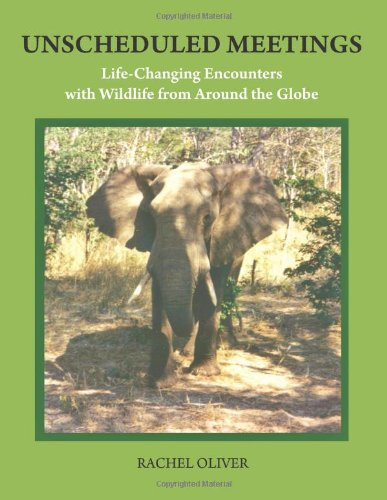 Download Unscheduled Meetings: Life-Changing Encounters with Wildlife from Around the Globe pdf epub