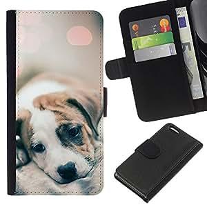Stuss Case / Funda Carcasa PU de Cuero - Luces borrosas lindos del perro del bebé - Apple Iphone 5C