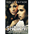 The Sheikh's Secret Love Child (The Sheikh's Baby Surprise Book 2)
