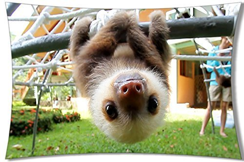 Cute Sloths Pillowcases&Quot;Two Sides Printed&Quot;Rectangle Zippered Animal Pillowcases 20X30 Inches -