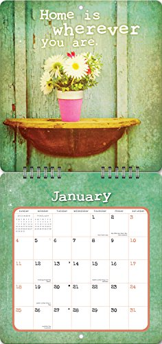 Orange Circle Studio 2015 Studio Redux Mini 16-Month Wall Calendar, Today Is Day One by Thomas Brown (14541) Photo #2