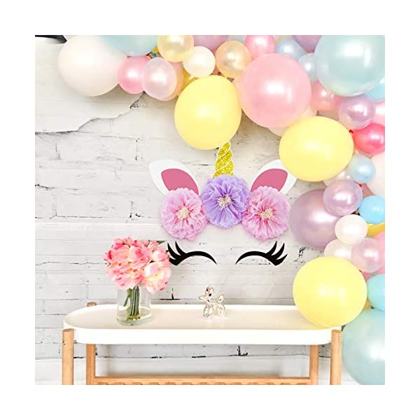 Unicorn Backdrop Party Supplies Decorations - Paper Tissue Flower Decor 8