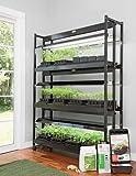 LED SunLite174; 3-Tier Garden Starter174; Kit
