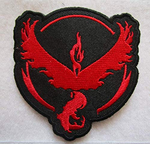 Firebird Team Valor 3D Tactical Military Badges Embroidered Patch Back with Loops and Hook