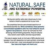 Natural Toenail Fungus Treatment Nail Renewal