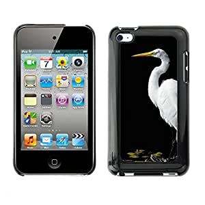 Hot Style Cell Phone PC Hard Case Cover // M00135127 Alba Ardea Standing Side From Great // Apple ipod Touch 4 4G 4th