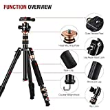 """Rangers 55"""" Ultra Compact and Lightweight Aluminum Tripod with 360° Panorama Ball head, ideal for travel and work"""