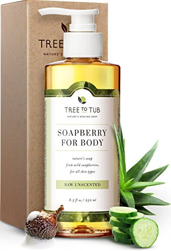 Ultra Gentle Sensitive Skin Body Wash by Tree To Tub - pH 5.5 Balanced, Hypoallergenic Fragrance Free Body Wash. Eczema Body Wash for Women and Men, with Wild Soapberries Organic Aloe Vera 8.5 oz (Best Body Wash For Fair Skin)