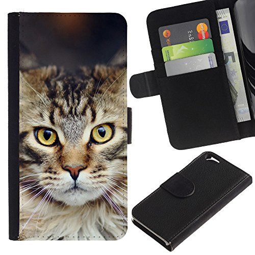 EuroCase - Apple Iphone 6 4.7 - Maine coon norwegian forest cat - Cuir PU Coverture Shell Armure Coque Coq Cas Etui Housse Case Cover