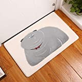 YQ Park Low Profile Gray Fat Cat Door Mat Fashion Welcome Pad Garage
