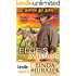 Montana Sky: Elof's Mission (Kindle Worlds Novella) (Grooms with Honor Book 0)