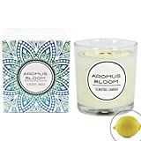 AromusBloom Lemon Scented Candle Gift with Natural Essential Oils, 100% Eco-Friendly Soy Wax Aromatherapy Candle, Net Weight 5.6oz, Home Fragrance, 5 Scents